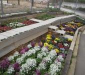 花壇作り場面